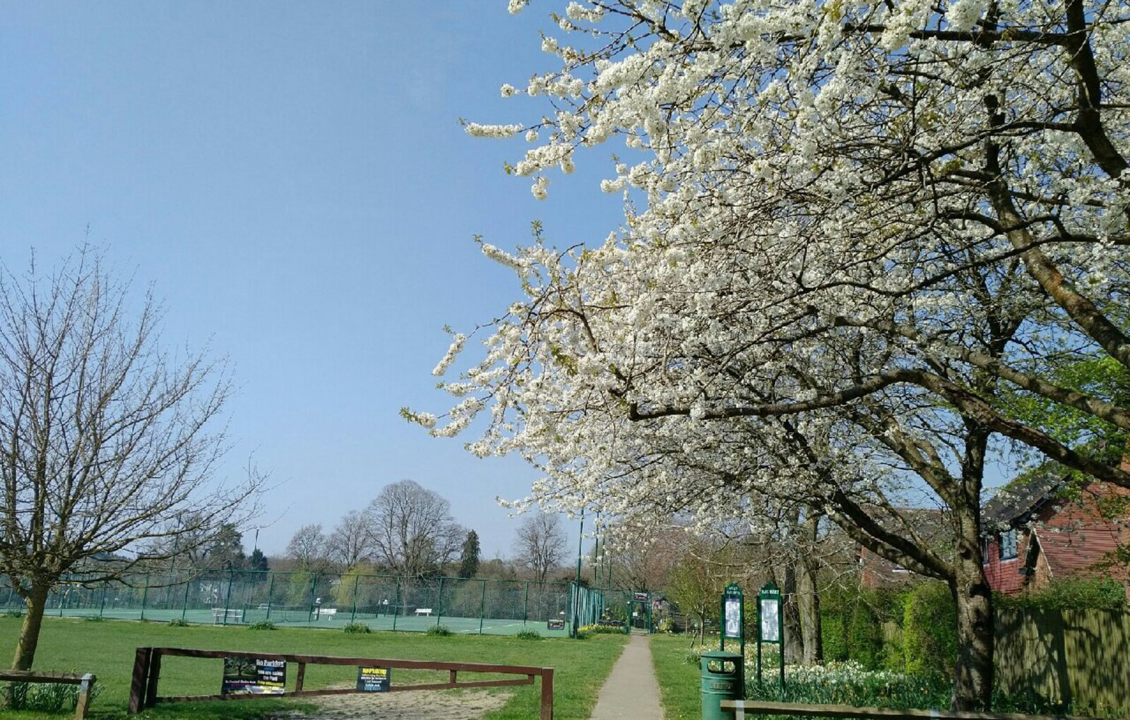Support Oxted's Master Park